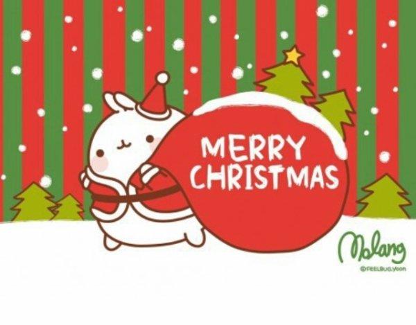 Joyeux Noël à tous. 🎄