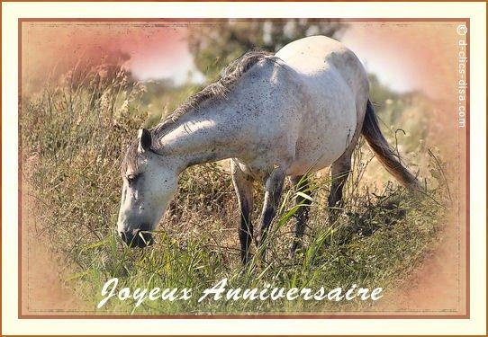 Un joyeux anniversaire.......