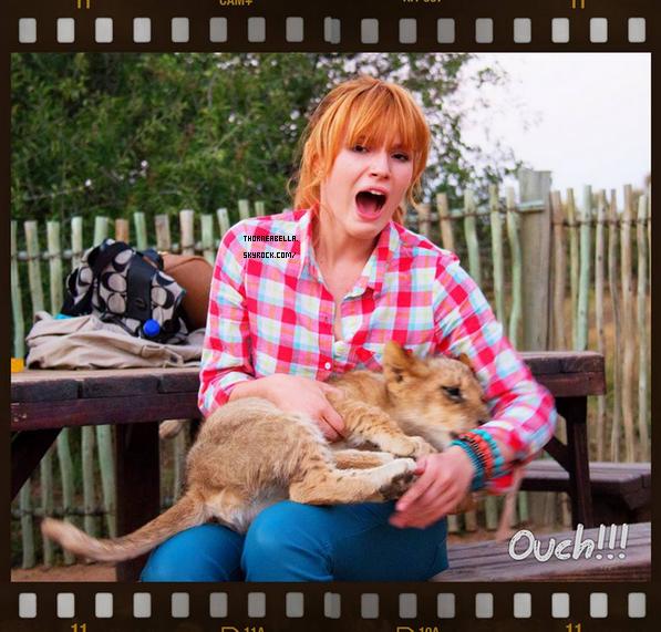 Nouvelles photos twitter de Bella en Afrique du Sud .