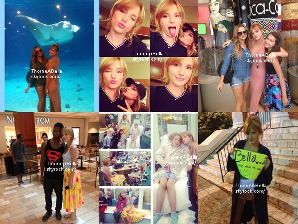 Nouvelles photos twitter de Bella de ces trois derniers jours .