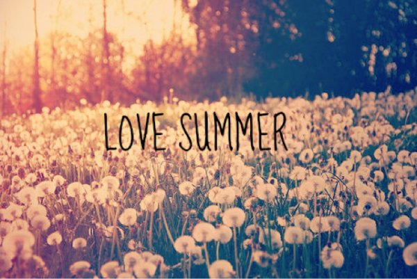 Concours de l'été