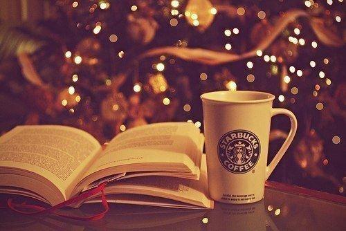 Christmas Time | Mes objectifs livresques pour l'année 2016