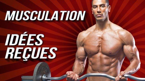 Conseils HOMME : 11 IDÉES REÇUES SUR LA MUSCULATION
