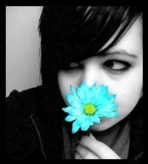 le silence est la meilleure réponse a la tristesse et la provocation