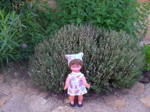 Les Minichou profitent de l'été et du jardin
