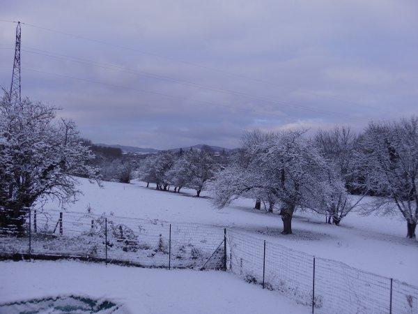 De ma fenêtre ce matin