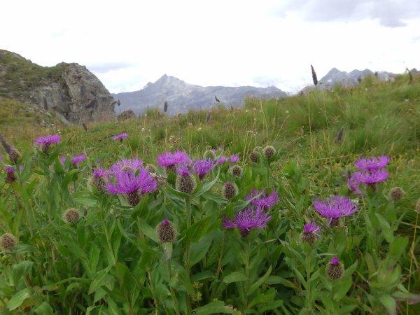 Photos de montagne - Jour 4