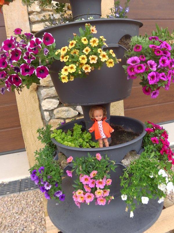 Enfin les Microbe reviennent  et se prélassent dans les fleurs de mon jardin !!!