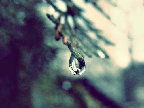 Goutte de pluie.