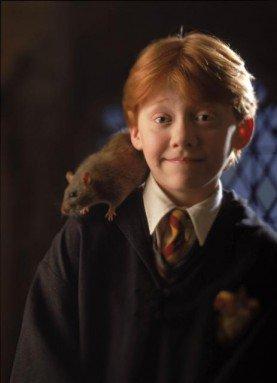 Ron et son rat, Croutard