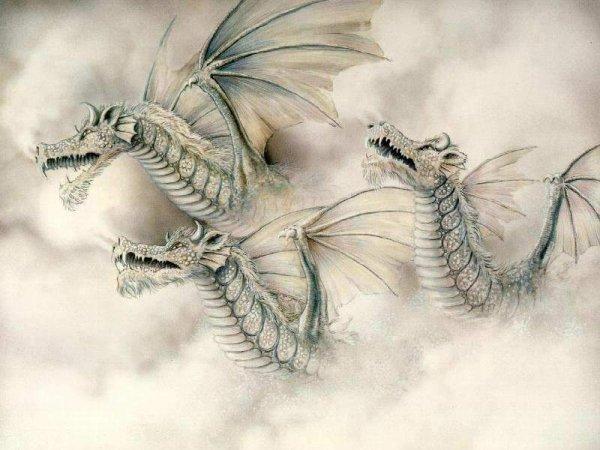 Dragons 10