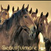 BeautifulMare