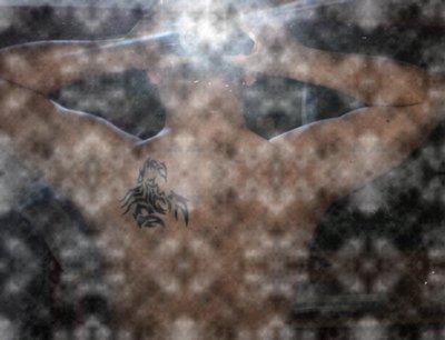 Spécial Damage: Zayx IRL
