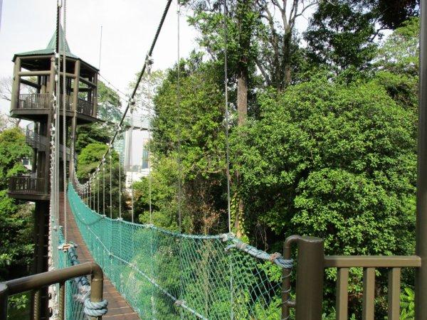 KL rainforest park