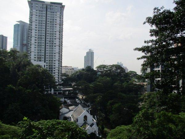 Sim city in the jungle