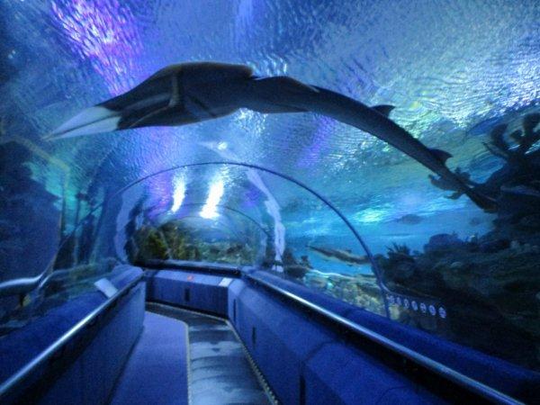 Aquaria park KL