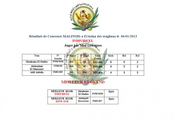 Resultats du concoure malinois a el kelaa des sraghnas le 06/01/2013