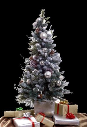 ♥♫ ♥..... Bon Réveillon et Joyeux Noël 2015 !!.....♥♫ ♥