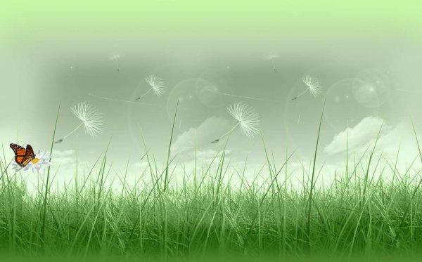 Didier-1973 43 ans   Article : NatureAlpha fête ses 31 ans demain, pense à lui offrir un cadeau.Aujourd'hui à 20:02 Le 18/06/2017 à 18:05 Bonne anniversaire