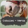 Caballos-Horse