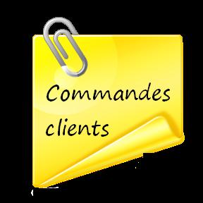 Commandes D'Articles En Particulier