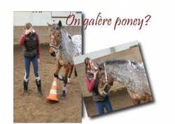 quand on monte un cheval on ne fait que l'emprunter.