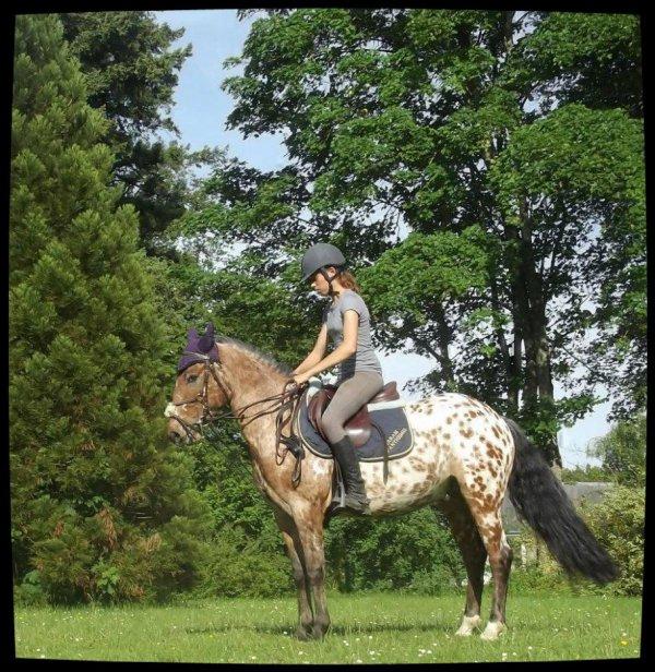 Wild horses I want to be like You