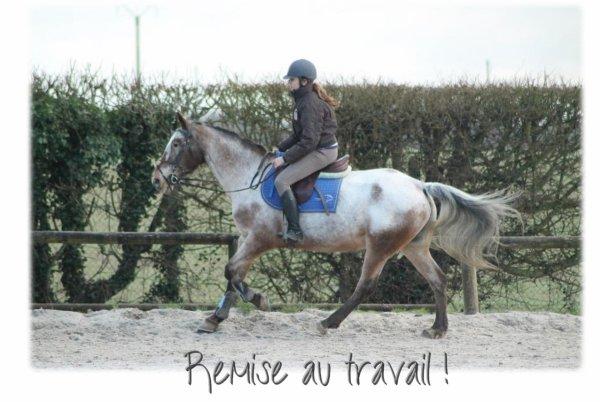 L'équitation n'est pas quelque chose de mécanique, qu'on peut comprendre en un clic.
