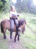 Photo de ponyworld