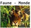 Faune-Monde