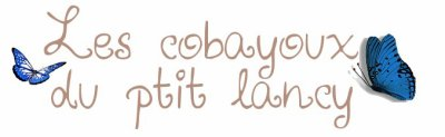 Bienvenu chez les cobayou du ptit lancy !