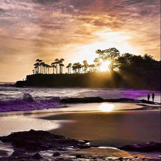 La solitude est la nuit de l'âme, un jour la plus discrète amie de nos vie