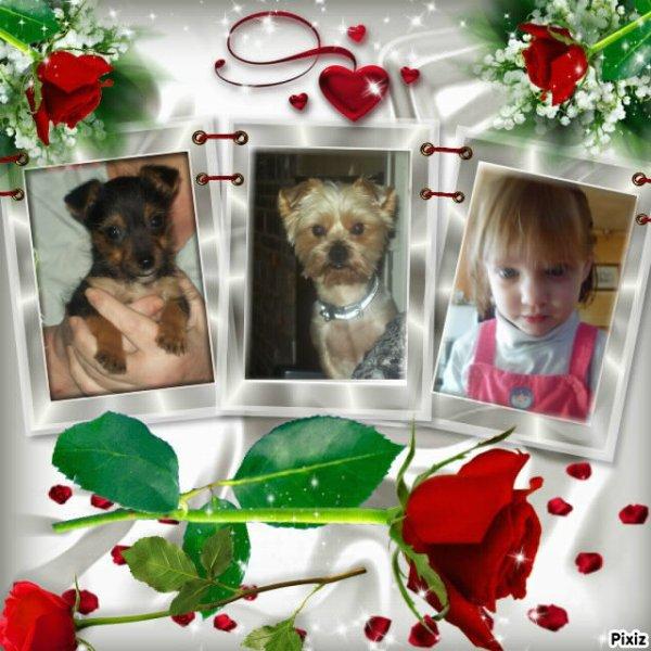 voicie deux montage de se que j'aime et qui et dans mon coeur....donc ma chienne noir  jessie le chien de ma fillle edy et ma puce donc ma petite fille shaina