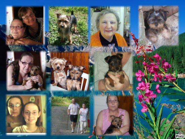 voici des montages de la familles et d'autre