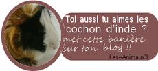 ☮ Bienvenue sur mini-chaussette ☮