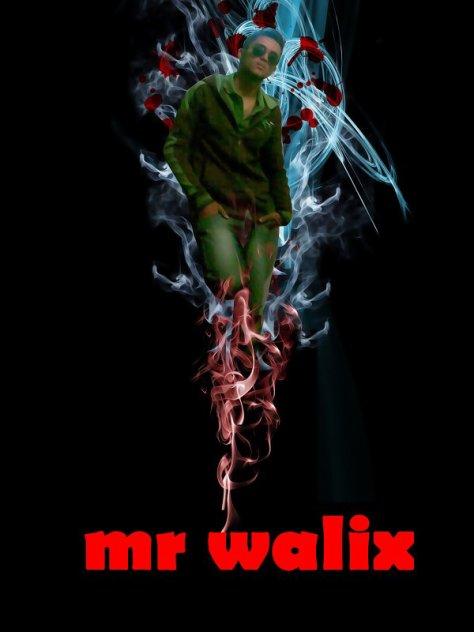 Mr Waliix