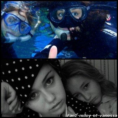 Voici quelques photos perso de Miley de l'année 2010.