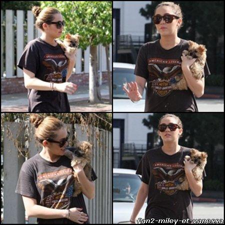 Voici de nouvelles photos de Miley Cyrus en sortie avec son nouveau chien ce mardi 8 février 2011.