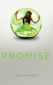La trilogie Promise.