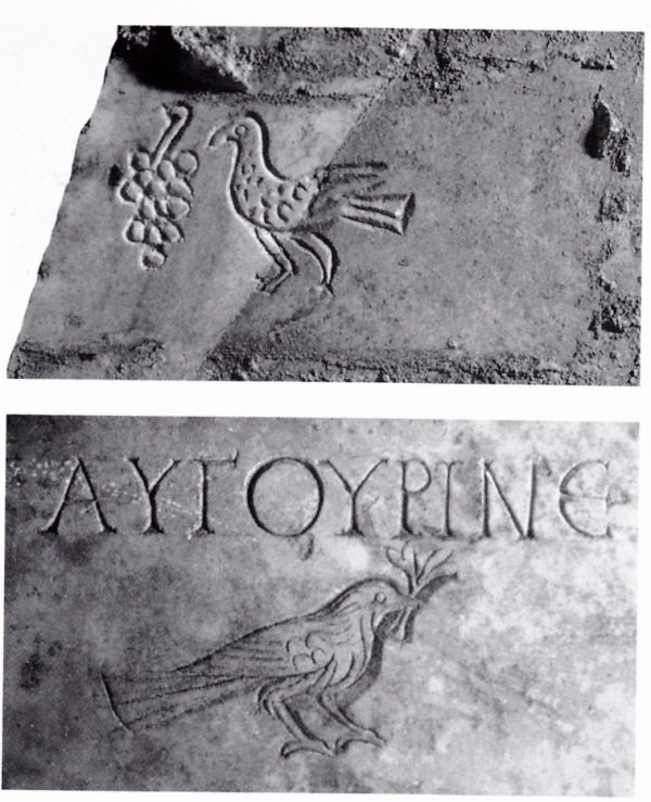 La colombe romaine