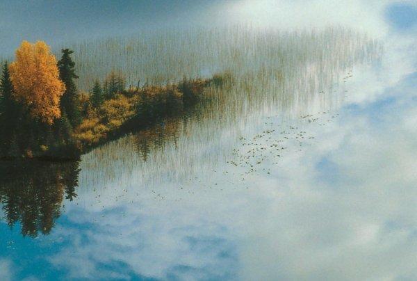 La terre deviendra le Paradis