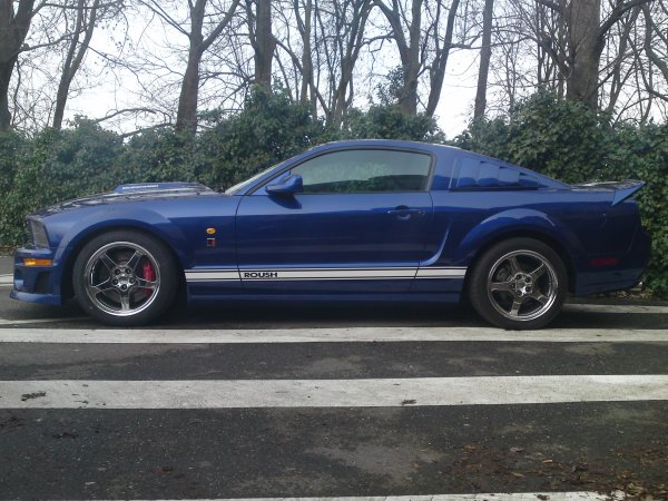 mustang anglaise 1ere partie