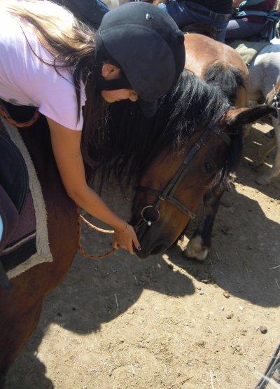 Parce qu'il n'y a Que dans les yeux d'un cheval Que l'on peut voir la vraie liberté. ♥