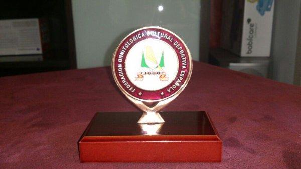 Mi primera medallita