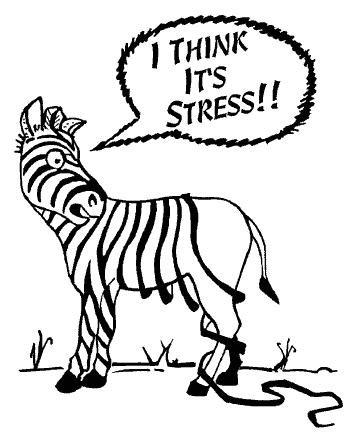Le stress me bouffe