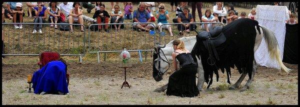 Journées Equestre Montferrat 2011