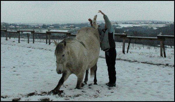 31.01.12  Poyo et neige...