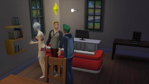 Les Sims : Vinsmoke Family