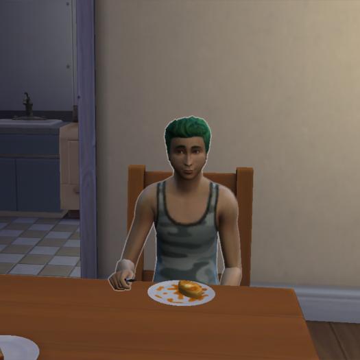 Les Sims: Roronoa Family #3