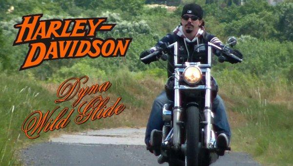 Harley Davidson Wild Glide carbu 1450